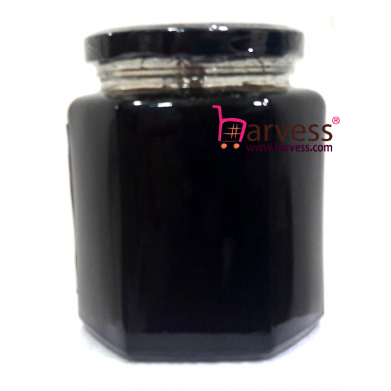 ORIBEE Rainforest Dark Premium Honey - Wild. Raw. Pure. Mature (480g)