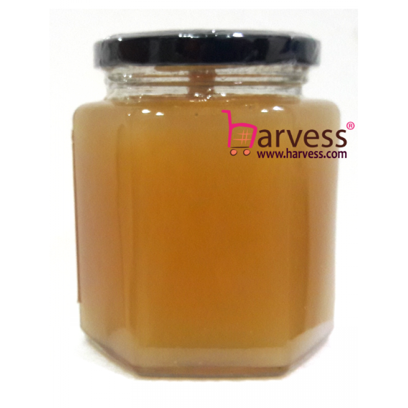 ORIBEE Rainforest Royal Jelly Honey - Wild. Raw. Pure. Mature (480g)